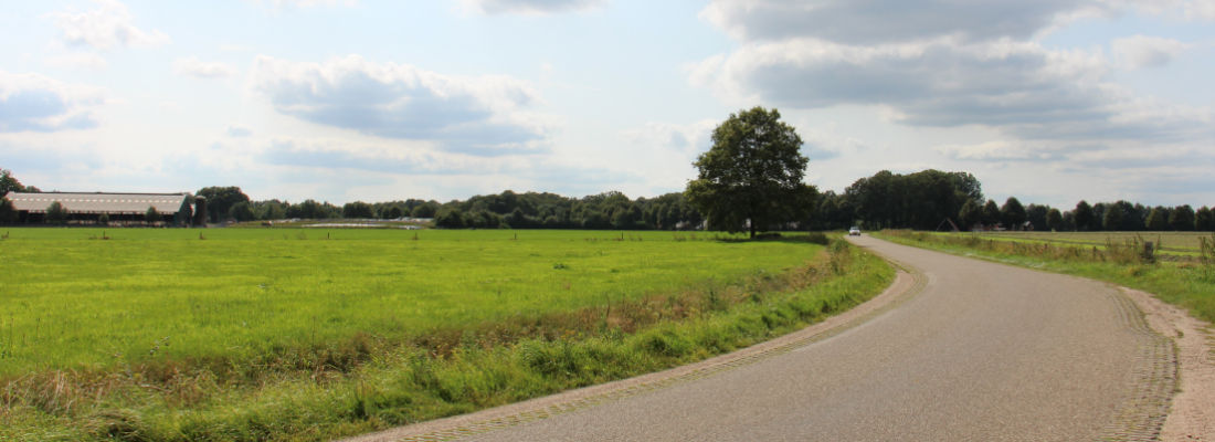 Essenlandschap in Volthe